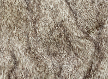 Faux fur fabric for the fashion industry used to artificially recreate animal pelts including reindeer and coyote. The use of a fake synthetic version not causing offence with animal rights activists. Standard-Bild