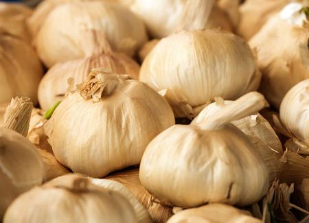 Smoked Garlic bulbs a popular flavoursome ingredient in modern bistro recipes. Standard-Bild