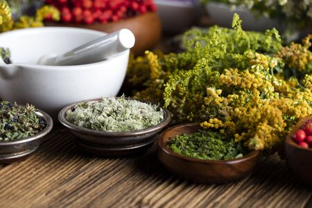 peppercorn: Dry colorful spices in bowls