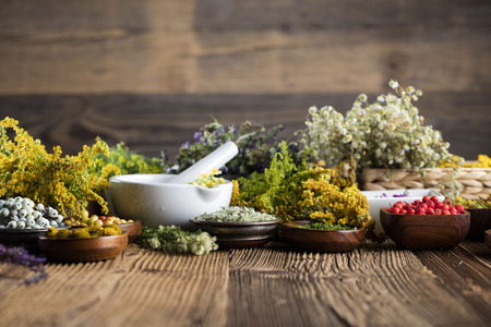 Natural medicine concept - set of herbs and edible fruits on wooden table Banco de Imagens - 72659082