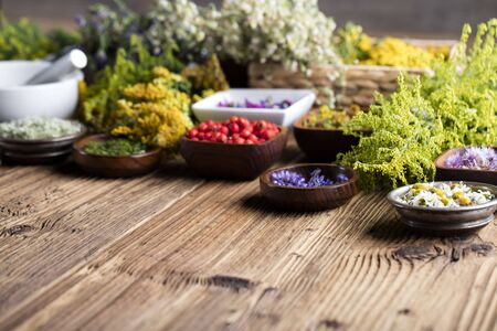 Natural medicine concept - set of herbs and edible fruits on wooden table
