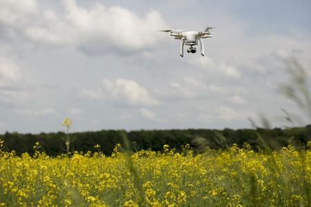 Dron en acción. Paisaje del campo de la violación. Tiempo de verano. Concepto de los fondos. Foto de archivo - 75081202