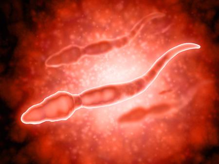 spermatozoon: Microscopic view of male sperm cells.