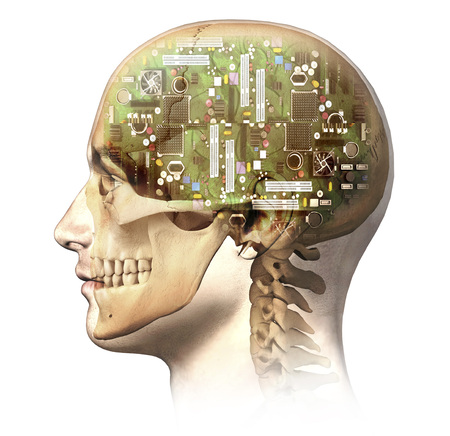 Male human head with skull and artificial electronic circuit brain in ghost effect, side view.  LANG_EVOIMAGES