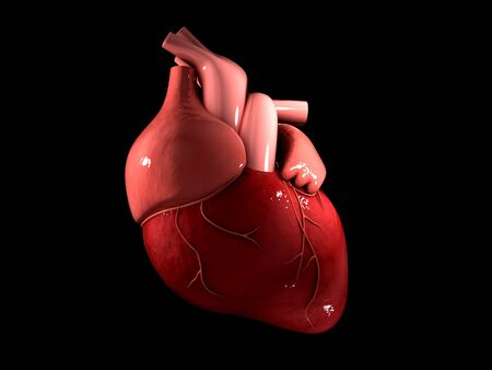 Conceptual image of human heart.