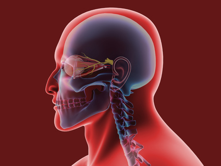 Conceptual image of human eye and skull.
