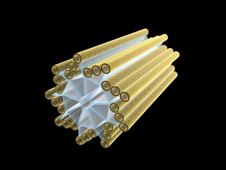 Imagen conceptual de centriole. LANG_EVOIMAGES
