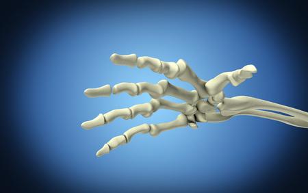 Imagen conceptual de los huesos en la mano humana.