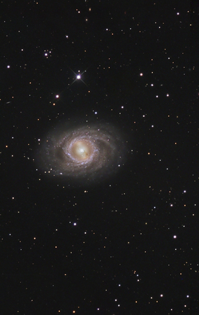 messier: Messier 95,a barred spiral galaxy in the constellation Leo LANG_EVOIMAGES