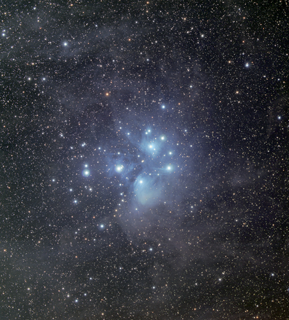 the pleiades: The Pleiades surrounded by dust and nebulosity