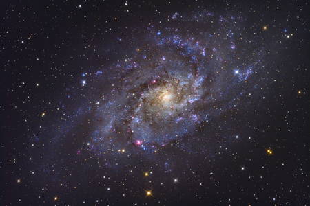 The Triangulum Galaxy LANG_EVOIMAGES