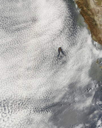 vortices: Cloud vortices and glory off Guadalupe Island,Mexico