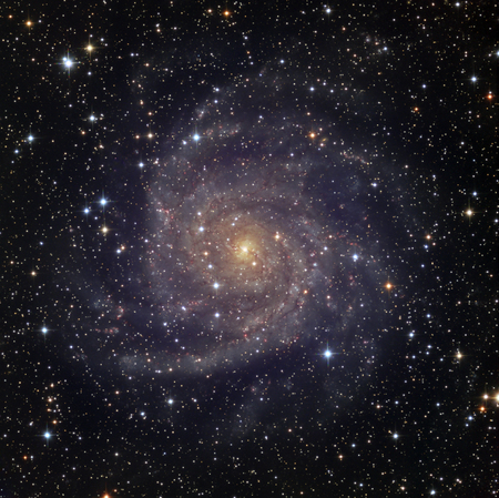 IC 342,an intermediate spiral galaxy in the constellation Camelopardalis LANG_EVOIMAGES