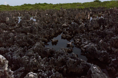attraktion: Grand Cayman, field of rocks called hell