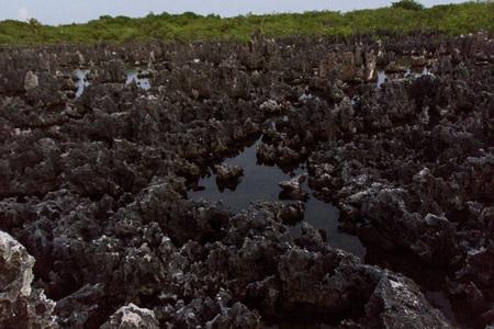 attraktion: Grand Cayman, field of rocks called hell