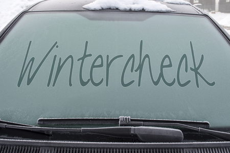 windshield with wintercheck