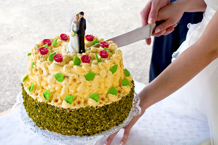 Newly wed couple is cutting a wedding cake