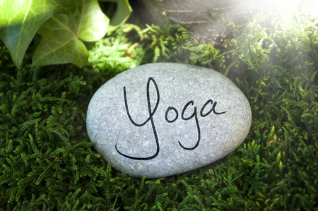 Gray stone with moss in the forest with massage, qi, reiki, relax Stock fotó