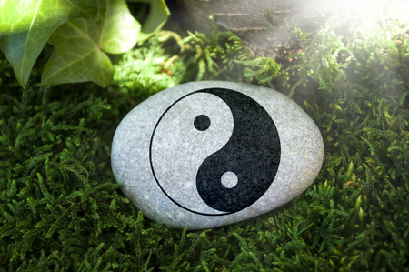 Grey stone lying on moss in the forest with yin yang symbol