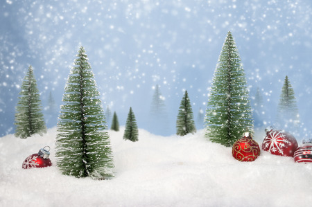 Fir Trees with snow and snowflakes Merry christmas 免版税图像