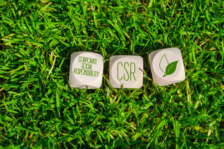 Cubes or dice with acronym CSR Corporate Social Responsibility in green grass
