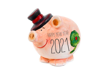Miniature pig isolated with happy new year 2021 and german translation happy new year 2021