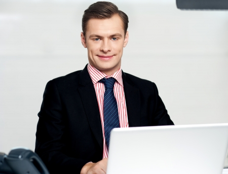 Businessman sitting in office and working on laptop Stock Photo - 14382562