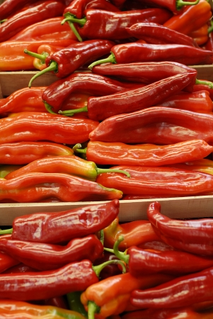 Close-up shot of red chilli peppers at market stall photo