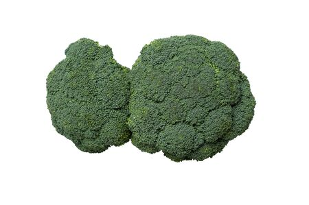 Fresh broccoli cabbage isolated on white background  photo
