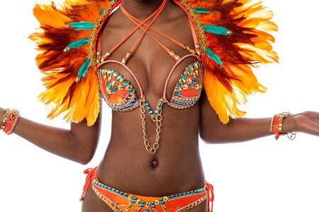 Cropped image of a woman samba dancer Standard-Bild