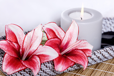 stargazer lily: Picture of Lily flowers and scented lighted candle Stock Photo