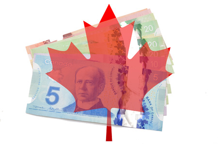 canadian maple leaf: Canadian maple leaf with dollars on white background.