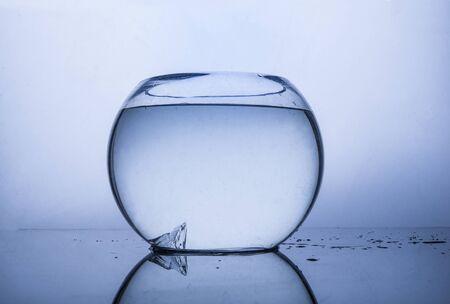 Water aquarium stock photo with light gray background