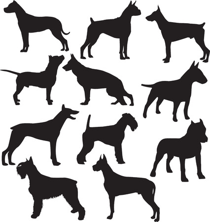 Set of silhouettes of standing working dogs 向量圖像