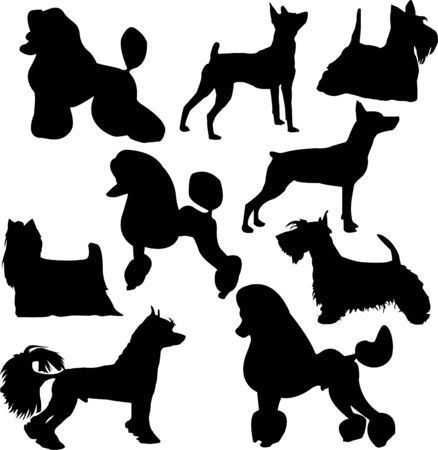 Set of silhouettes of standing decorative dogs Illustration