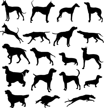 Set of silhouettes of hunting dogs in point and motion