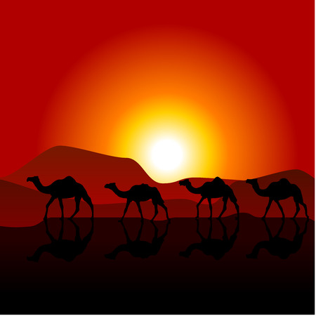 camels: Silhouettes of caravan of camels on desert sunset Illustration