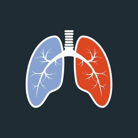hipertension: Los pulmones silueta - fluorograf?a de los pulmones sanos