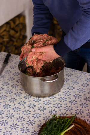 Cooking cutlets steaks. Minced meat in bowl, meat patties. Ingredients for minced meat onion, garlic, rosemary, thyme, tomato, pepper, oil. Minced meat on the table. Reklamní fotografie