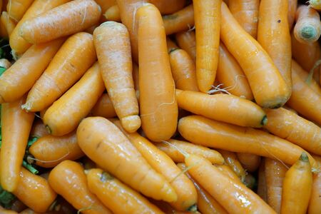 Fresh carrot bunches in open air market stock photo
