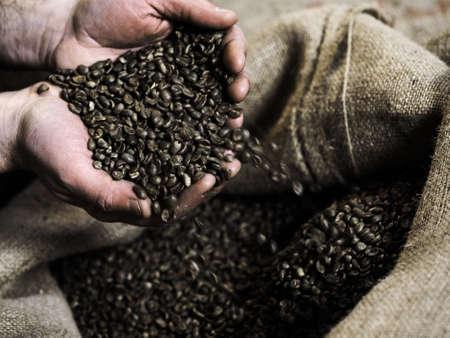 punhado: Handful of raw coffeebeans Banco de Imagens