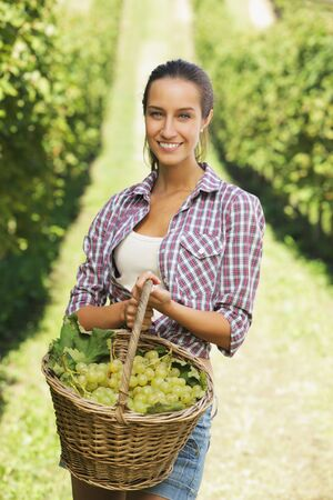 peasant: Smiling woman with basket of grapes in the vineyard