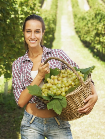 biological vineyard: Smiling woman with basket of grapes in the vineyard