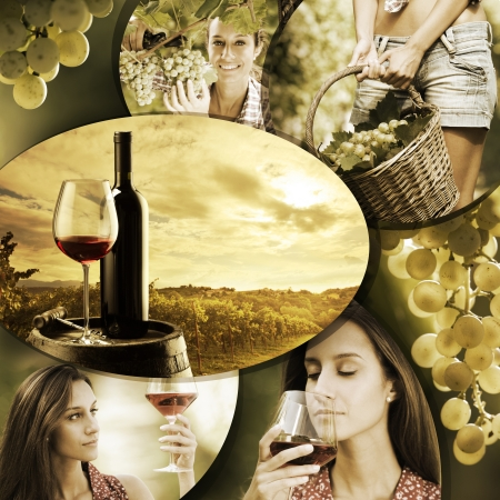 Wine collage, beautiful collection of wine images photo