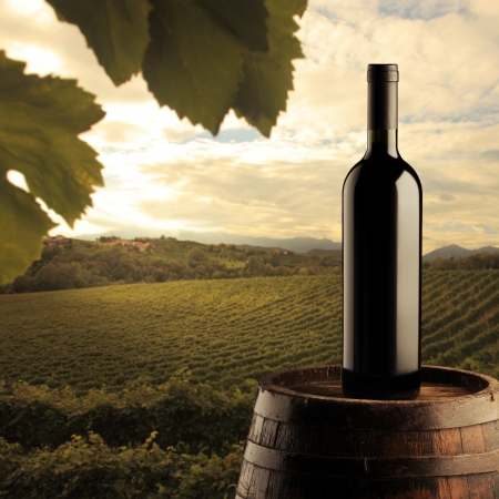 red wine bottle on wodden barrel, vineyard on background photo