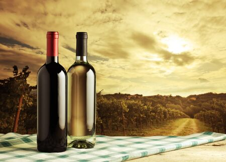 red and white wine: Wine bottles on vineyard background