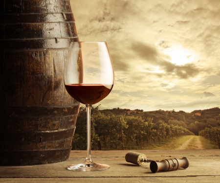 Wine glass on vineyard background photo