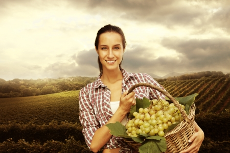 campesino: Mujer sonriente con la cesta de uvas en el vi�edo