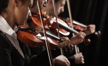 m�sico: Sinf�nica de la m�sica, violinistas en el concierto