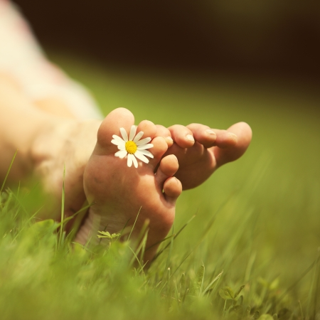 Daisy and bare feet on green grass, copy space photo